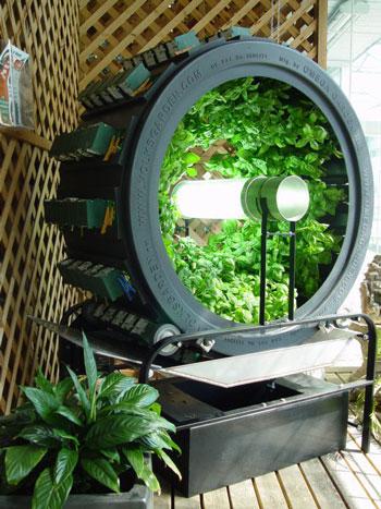 Urban Farming Benefits Omega Garden
